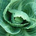 Verduras y frutas que causan gases