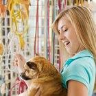 ¿Quiénes son los clientes objetivos para las tiendas de mascotas?