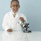 Los objetivos de enseñar ciencia a los prescolares