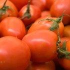 What Is Tomato Chutney?