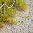 Piel con picazón después de una visita a la playa