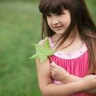 Actividades para el jardín de infantes con recursos naturales de la tierra