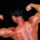 ¿Qué músculos trabaja el levantamiento de pesas?