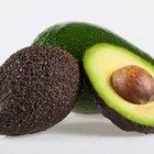 Alimentos altos en calorías para niños que no pueden aumentar de peso