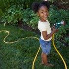 Actividad de siembra de semillas para niños