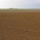 ¿Que capa del suelo contiene la mayor parte de materia orgánica?