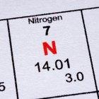 ¿Toman las plantas el nitrógeno directamente del aire?