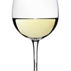 Qué copa usar para tomar vino blanco