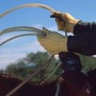 Cómo lanzar un lazo para atrapar a los novillos por las patas