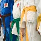 Niveles de cinturón en judo