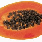 How to Eat Caribbean Red Papaya