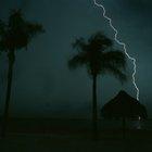 ¿Por qué es peligroso refugiarse bajo un árbol durante una tormenta eléctrica?