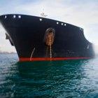 ¿Cómo afecta al ambiente un derrame de petróleo?