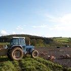 Agricultural Hobby Farm Grants