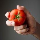 ¿Qué verduras tiene el jugo de tomate V8?