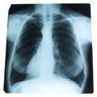 ¿Cómo se regula la respiración?