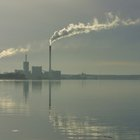 ¿Cómo afecta el dióxido de carbono a las plantas?