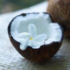 Aceite de coco como limpiador de colon