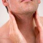 ¿Puede la L-tirosina restaurar la función tiroidea?