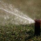 How to Start a Sprinkler Business
