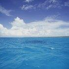 Cuerpos de agua que cubren gran parte de la superficie