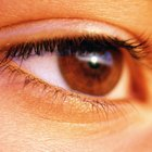 Clothing Colors for Brown Eyes