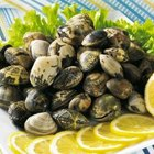 How to Buy Clams