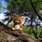 About Teddy Bear Picnics