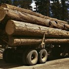 How Does a Sawmill Work?