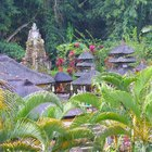 How to Open a Small Business in Bali