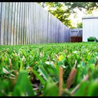 How to Calculate Lawn Services