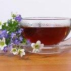 How to Make Organic Raw Kombucha