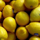 Can You Eat While Doing the Master Cleanse?