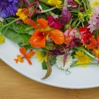This Flower Salad Is Almost Too Gorgeous to Eat