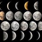 Por qué a veces la luna se observa por la mañana y por la tarde