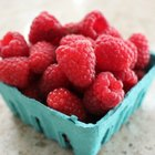 How to Grow Raspberries
