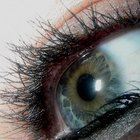 How Much Does Eyelash Perming Cost?