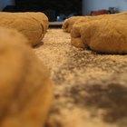 Four Types of Artisan Bread