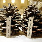 How to decorate a wedding with pinecones