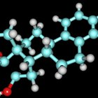 What effects does oestrogen have on an adolescent girl?