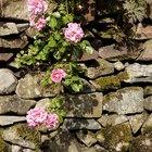 Ideas to make an inexpensive retaining garden wall