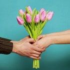 9 flores para o Dia dos Namorados