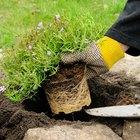 How to make a garden rockery