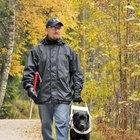 ¿Cómo ayudan los perros guía a los ciegos?