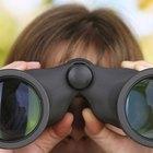 How to collimate binoculars