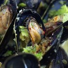 Can mussels be frozen?
