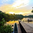 Ecotourism in the Amazon