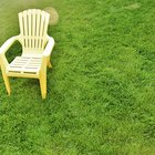 How to clean off algae from lawn furniture