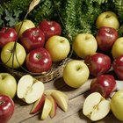 What factors affect the browning of an apple?