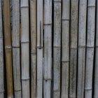 Cómo hacer una cerca de bambú